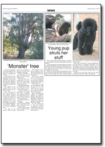 News Article : Macedon Ranges Guardian