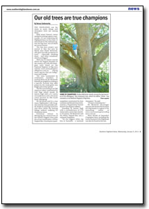 News Article : Mosman Daily