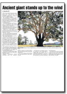 News Article : South Coast Register