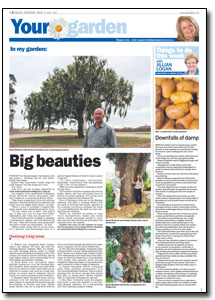 News Article : Geelong Advertiser
